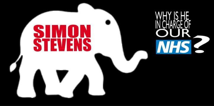 simon-stevens-white-elephant